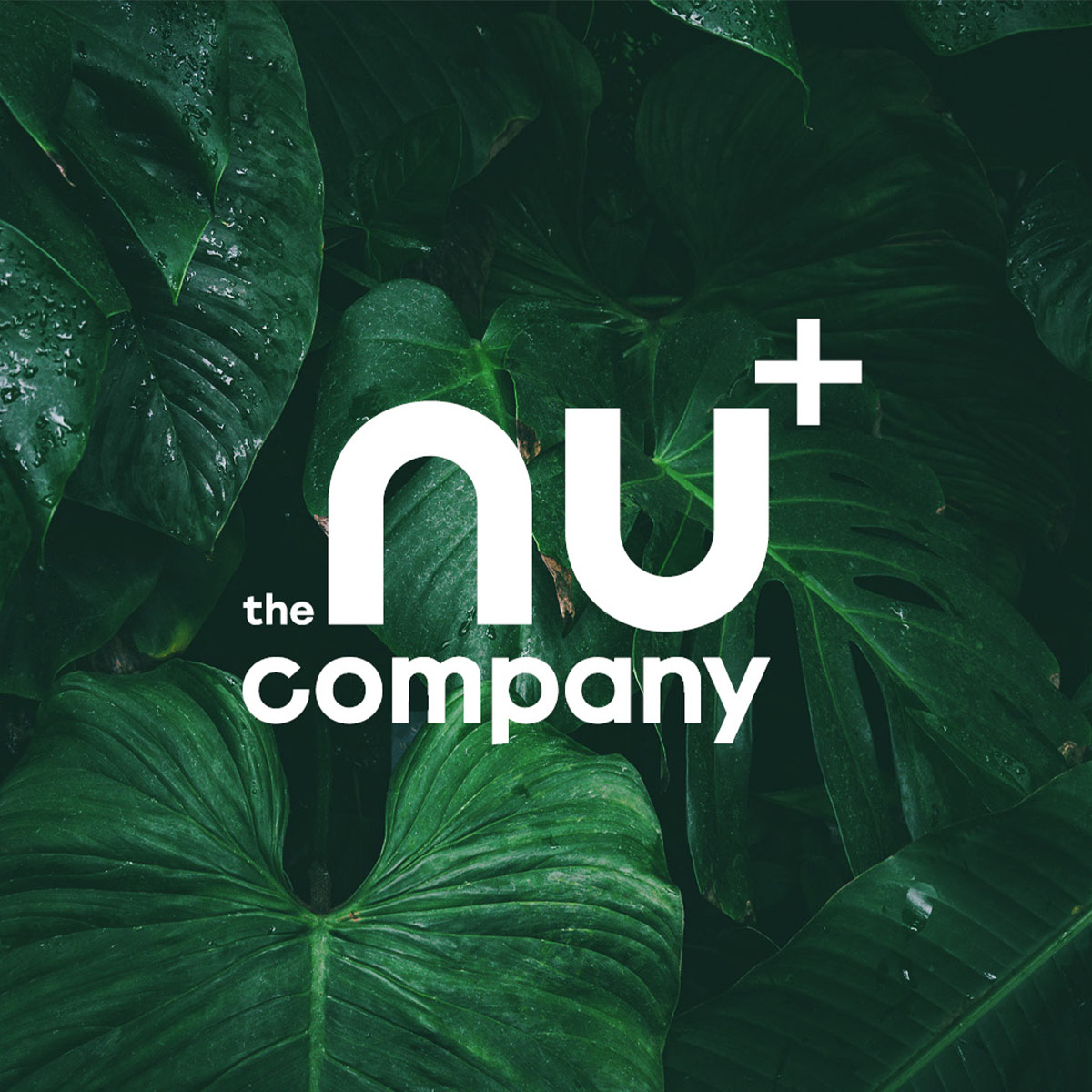 nu-company-Logo