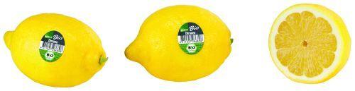Bio Zitronen