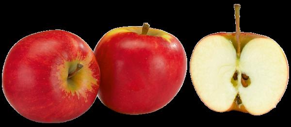 Äpfel Elstar 900g Packung