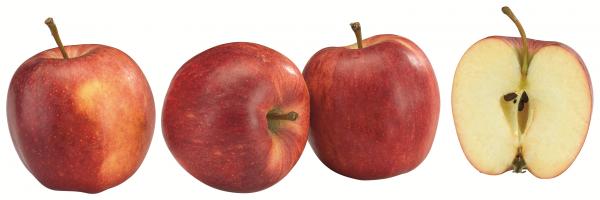 Äpfel Royal Gala, 1kg Packung