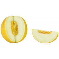 DV019_VOR_neutral-Galia-Melone-aufgeschnitten.png