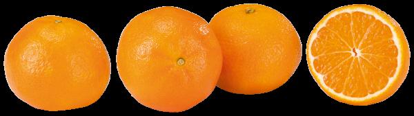 Clementinen/Mandarinen 1kg